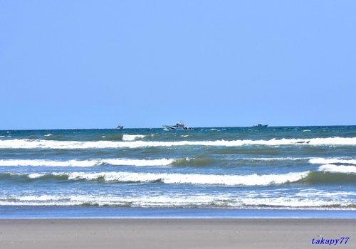 海岸1704aa.jpg