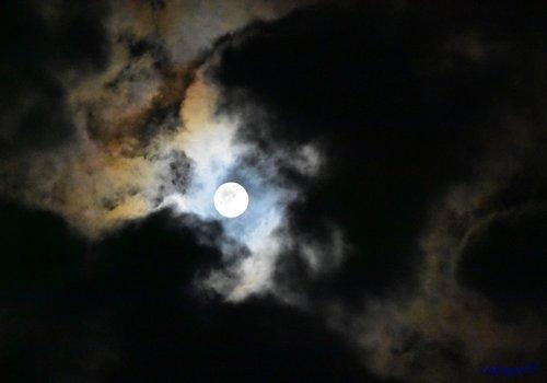 中秋の名月1710aa57.jpg