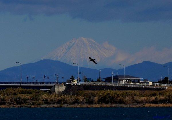 富士山1812aa35s.jpg