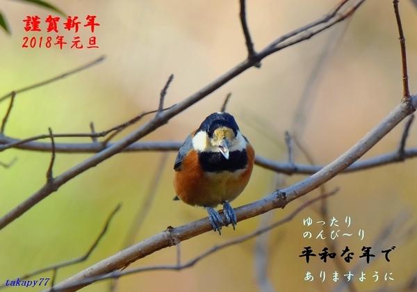 謹賀新年ヤマガラ.jpg